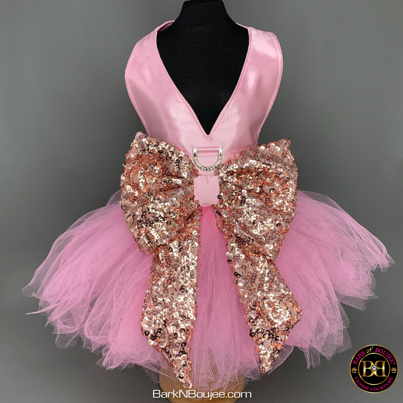 Ballerina Dream Pink and Gold Dog Dress