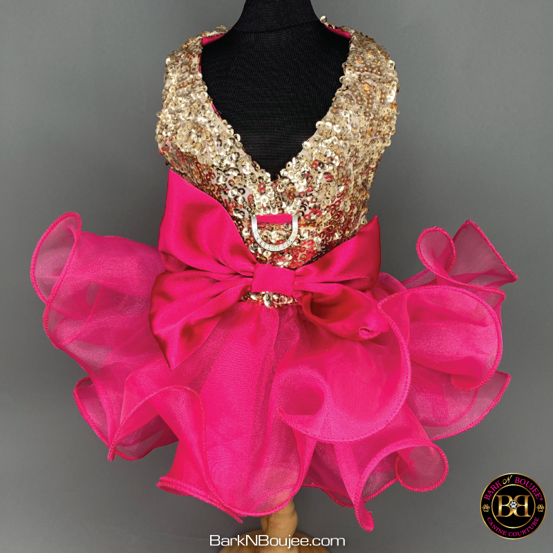 Get Glowing Gold Sequin Hot Pink Curl Dog Dress